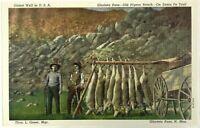Oldest Well USA Glorietta Pass Santa Fe Trail New Mexico NM Vintage Postcard