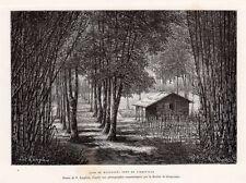 LIBREVILLE CASE DE MPONGOUE GABON GRAVURE ENGRAVING 1888