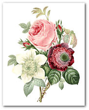 Flower Print, Botanical Rose Anemone Clematide Art, 8 x 10 Inches, Unframed