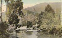 APC226) PC River Scene, Warburton, Victoria, unused, GC