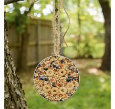 Mason Jar Lid Bird Feeder Set Of 2