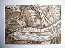 Tulipmania 9-SEPPIA-edizione limitata firmato morsura da studio Angela