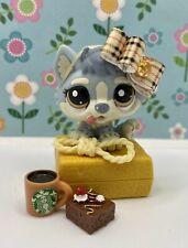 Authentic Littlest Pet Shop # 1683 Silver Gray Cream Husky Puppy Brown Eyes