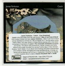 (DD890) James Yorkston, Catch - 2012 DJ CD
