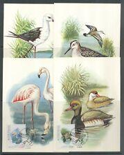 Portugal, 1982, Birds, Stork, Duck, Flamingo, nice Maxi cards