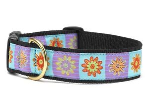 Up Country - Dog Puppy Design Collar - Made In USA - Lola - XS,  XL