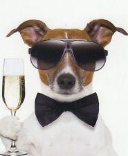 Pliante carte de luxe: Jack russel terrier Chico comme festifs et vieux routier