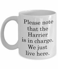 Funny Harrier Dog Breeds Mug - We Just Live Here Mug - Gift For Pet Lover