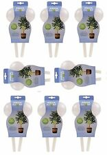 16 x Plant Watering Bulbs Aqua Globe Watering System For Plants Indoors/Outdoors