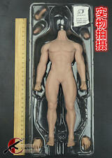 1/6 Phicen Toy PL2015-M30 Muscle Male Seamless Body Stainless Steel Figure