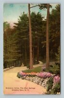 Watkins Glen NY, Glen Springs Entrance, Gardens Vintage New York c1929 Postcard