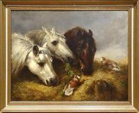 19th Century English Portrait Of Three Horses Heads Birds John Frederick HERRING