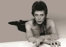 DAVID BOWIE POSTER PICTURE WALL ART PRINT A3 AMK2375