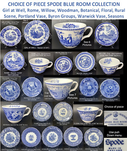 THE SPODE BLUE ROOM COLLECTION Georgian Series ENGLAND Reprod. from Copper Plate