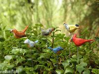 Miniature Dollhouse FAIRY GARDEN ~ Set of 6 TINY Bird Picks Birds ~ NEW