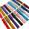 Ladies Genuine Leather Watch Band Ostrich Grain 9 Colours 12mm 14mm Free Pins