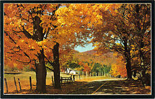 USA - New England Country Road