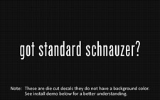 (2x) got standard schnauzer? Sticker Die Cut Decal