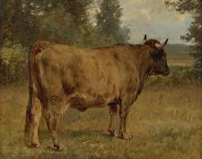 Bonheur Rosa Bull In A Landscape Canvas 16 x 20    #4686