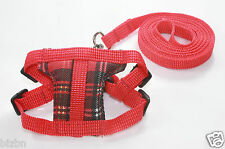 Red Soft harness & Leashes lead small pets guinea pig rat Hamster leveret FS
