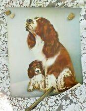 Vintage 1950's Springer Spaniel / English Setter Mama Dog And Puppy Litho Print