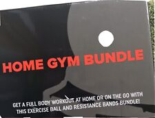 Home Gym Bundle Exercise Ball with 15lb Resistance Bands and Stability Base