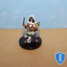 Lyrie Akenja - Rise of Runelords #23 Pathfinder Battles D&D Miniature