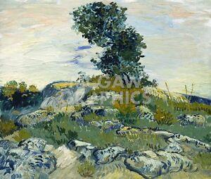 """vAN GOGH VINCENT - THE ROCKS, 1888 - ART PRINT POSTER 11"""" X 14"""" (1738)"""