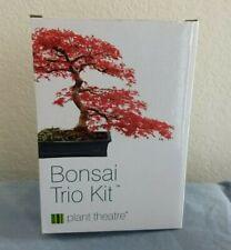 Bonsai Tree Trio Kit Plant Theatre Acer Rubrum Betula Pendula Pinus Mugo Pumilio