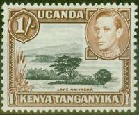 KUT 1938 1s Black & Yellowish-Brown SG145 P.13 x 13.75 V.F MNH