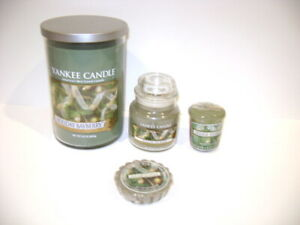 4 pc Yankee Candle HOLIDAY BAYBERRY 22 oz, 3.7 oz, Votive & Tart Free Shipping