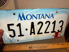 Montana Metal License Plate, 2002 tags, cool hologram, nice collectible, 51A2213
