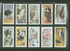 More details for brooke bond rhodesian issue african birds full set  1965 very good condition
