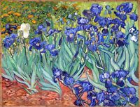 Irises Painting by Vincent van Gogh Art Reproduction