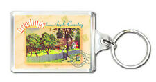 GREETINGS FROM APPLE COUNTRY KEYRING SOUVENIR LLAVERO
