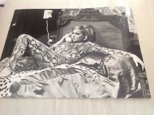 URSULA ANDRESS - PHOTO DE PRESSE ORIGINALE  27x21cm