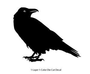Wildlife / Birds - Raven Crow 1 Standing Lookin Decal 6Yrs Outdoor Vinyl Sticker