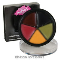 A842 Mehron ProColoRing Bruise Wheel FX Special Effect Professional Makeup Scar
