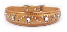 """Gold Leather Jewels Puppy/Dog/Cat Collar Neck:7""""-8.5"""" Pet Gift, C1-GOLD"""
