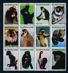 [SU1744] Suriname Surinam 2010 Wildlife Primates Monkeys  MNH