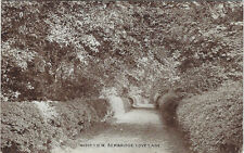 BEMBRIDGE ( Isle of Wight) : Love Lane -PHOTOCHROM