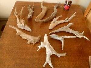 Driftwood Pieces x9 natural  sculptures. pointed branches.  vivarium . Bogwood