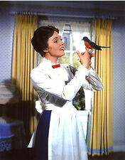 Julie Andrews Mary Poppins 8x10 photo T2472