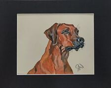 Art work, Rhodesian Ridgeback. Dog. Original . 11 x 14.
