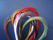 """50 Pcs Goose Biots Biot For Fly Tying & Craft Decoration -6-8"""" -You Pick Color"""