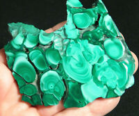 A Larger Polished Malachite STALAGMITE Slab or Slice! From The Congo 95.5gr
