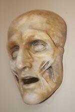 Death Mask Human Skull French Medical Anatomical Face Anatomy Oddity Gothic