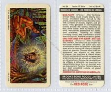 Post - 2nd World War Exploration/Empire Collectable Tea Cards