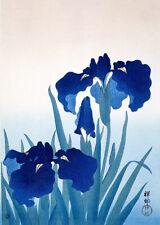 Japanese wall art Iris flowers (1927) Ohara Koson poster print home decor Asian