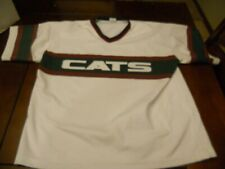 2006 Gary SouthShore RailCats Game Used Jersey #25
